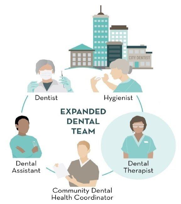 Illustrated graphic: dentist, dental assistant, community dental health coordinator, dental therapist, hygienist